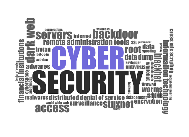 cyber security it security